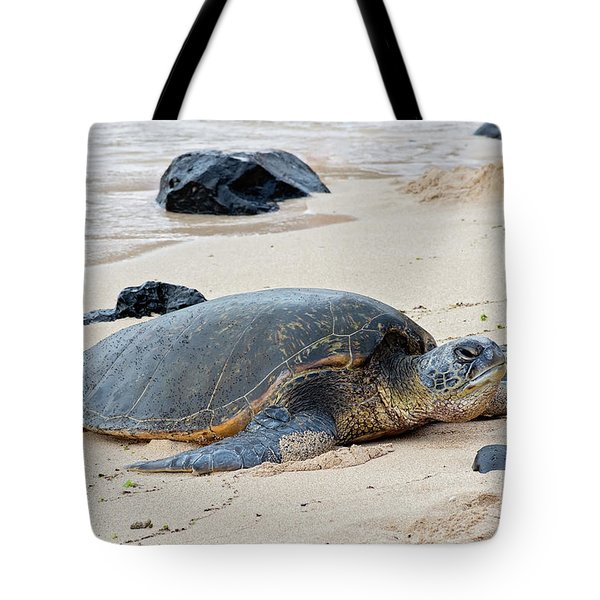 Lazy Day At The Beach Tote Bag