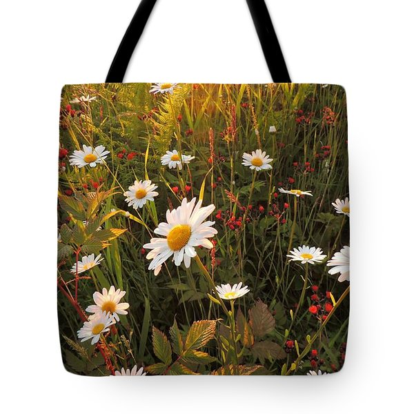 Lazy Days Daisies Tote Bag by Karen Horn