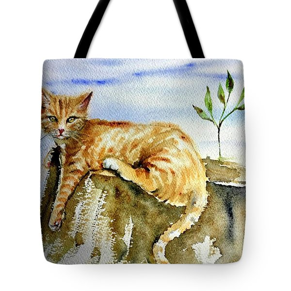 Lazy Evening Tote Bag