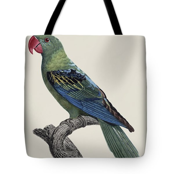 Le Perroquet A Bec Couleur De Sang / Great-billed Parrot - Restored 19thc. Illustration By Barraband Tote Bag by Jose Elias - Sofia Pereira