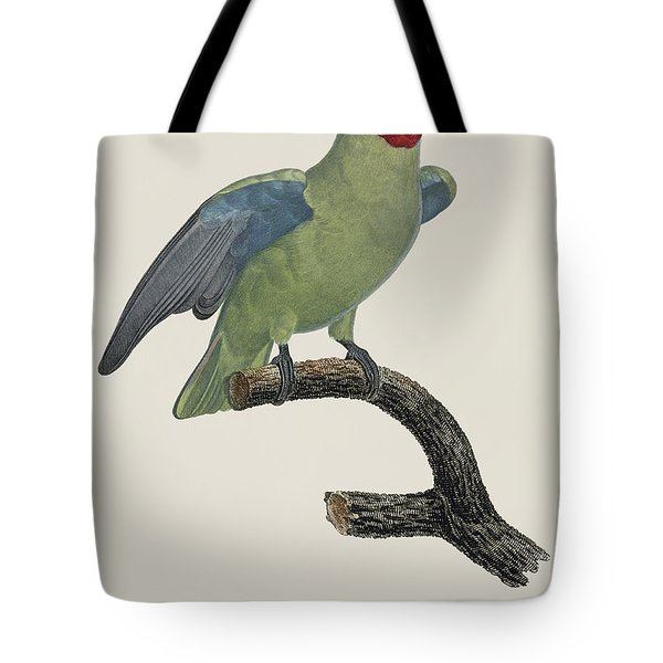 Le Perroquet Geoffroy Male / Red Cheeked Parrot - Restored 19th C. By Barraband Tote Bag by Jose Elias - Sofia Pereira
