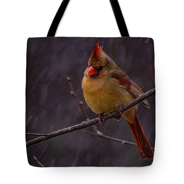 Leading Lady  Tote Bag