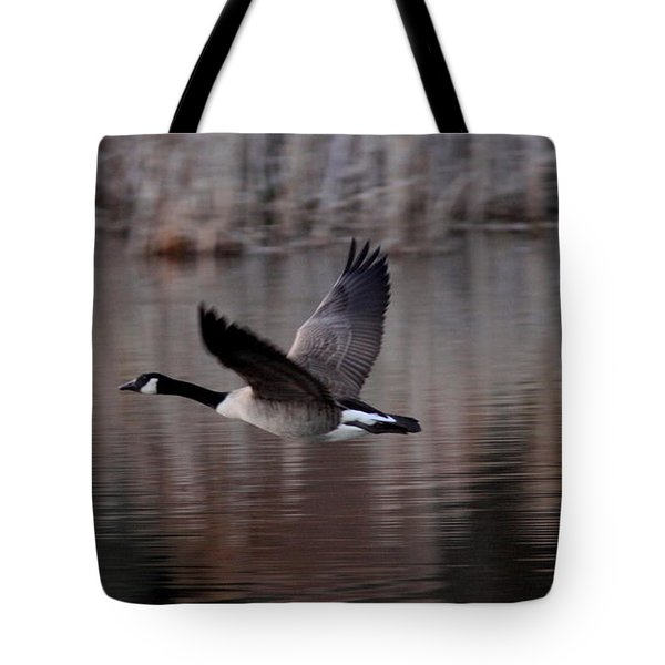Leading The Way Tote Bag by Travis Truelove
