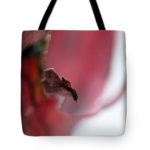 Leaf Abstract II Tote Bag
