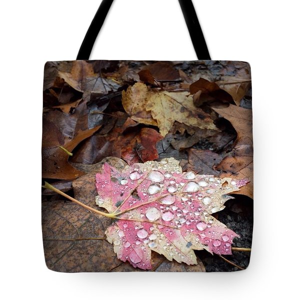 Tote Bag featuring the photograph Leaf Bling by Kendall McKernon
