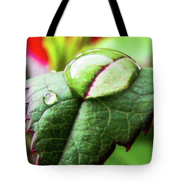 Leaf Tote Bag by Cesar Vieira