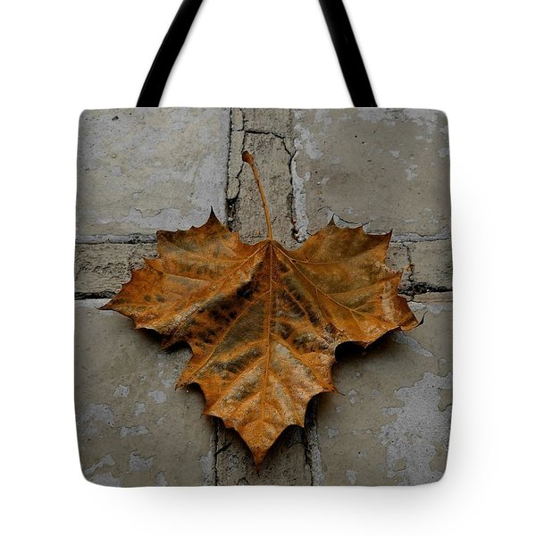 Tote Bag featuring the photograph Leaf Cross by Patricia Strand
