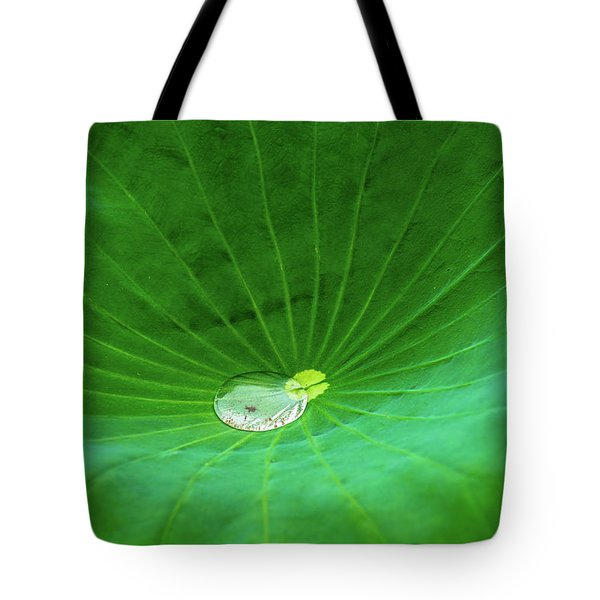 Tote Bag featuring the photograph Leaf Cupping A Giant Water Drop by Dennis Dame