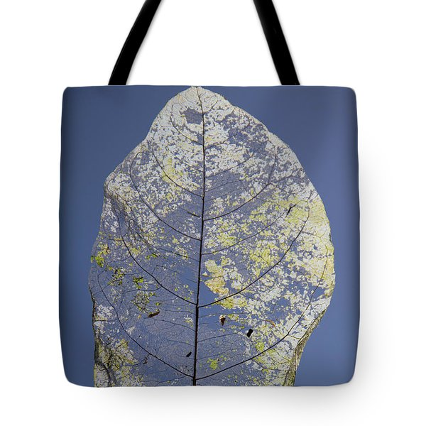 Tote Bag featuring the photograph Leaf by Debbie Cundy