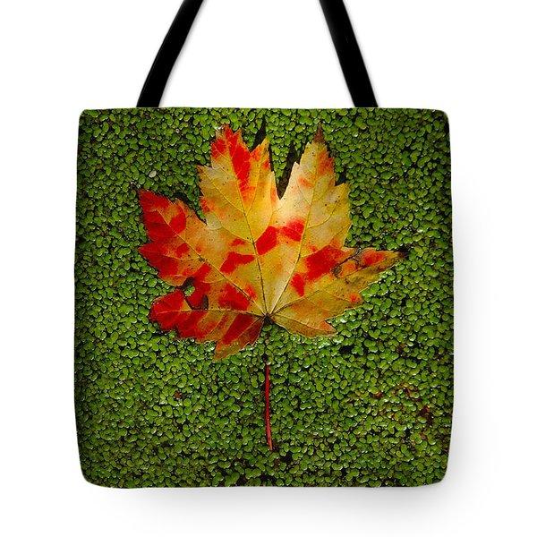 Leaf Floating On Duckweed Tote Bag