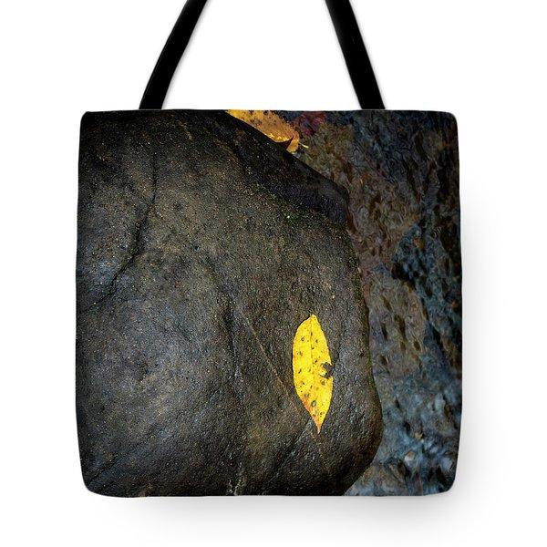 Leaf On Rock Tote Bag