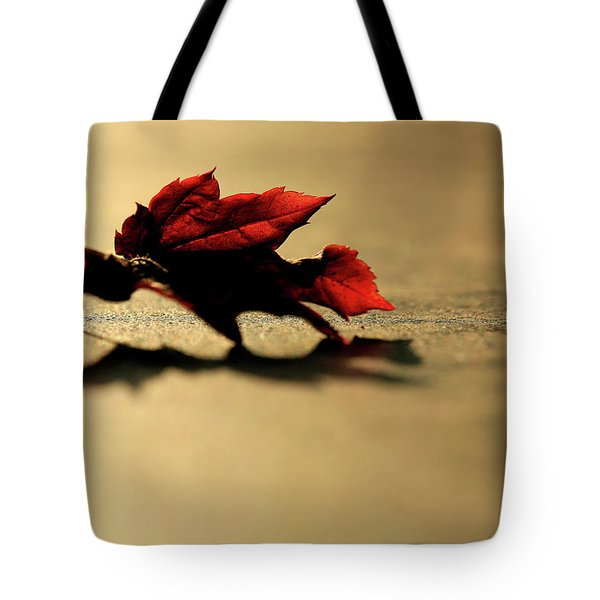 Leaf On The Garage Floor Tote Bag