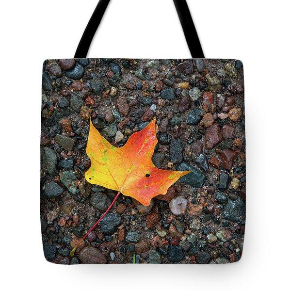 Leaf On Wet Gravel Tote Bag