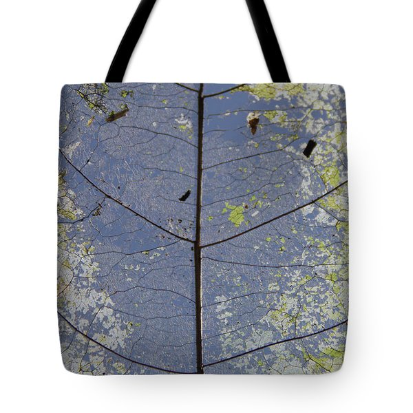 Tote Bag featuring the photograph Leaf Structure by Debbie Cundy
