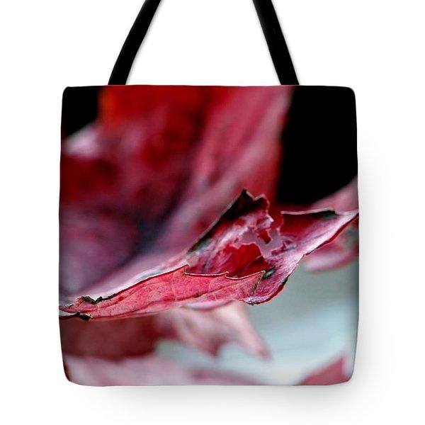 Leaf Study II Tote Bag