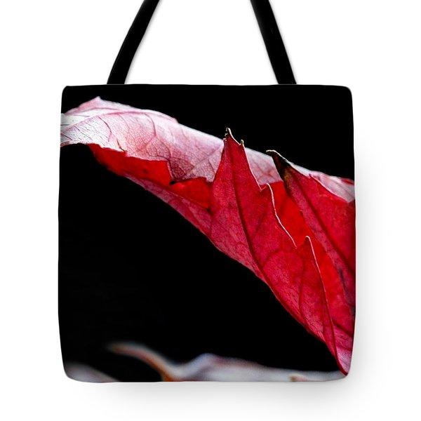 Leaf Study IIi Tote Bag