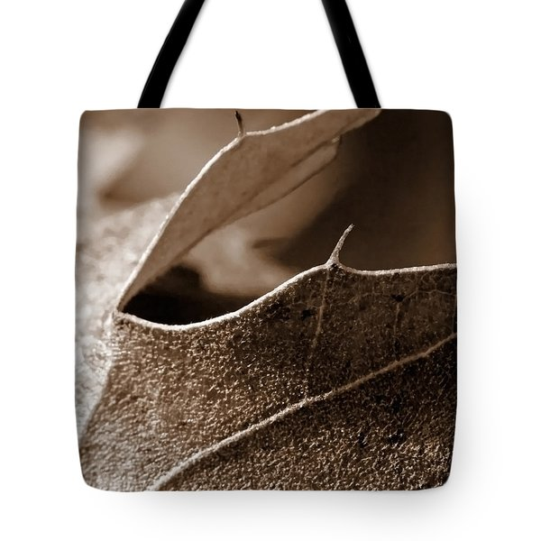 Leaf Study In Sepia II Tote Bag