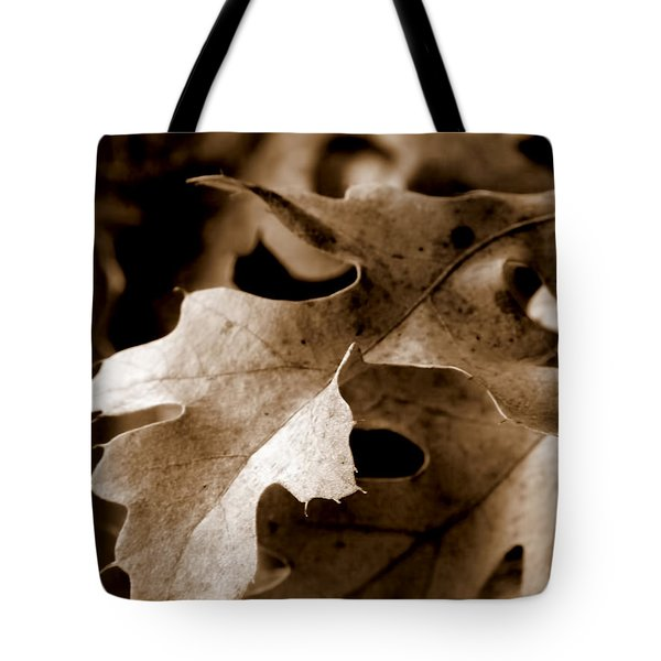 Leaf Study In Sepia IIi Tote Bag by Lauren Radke