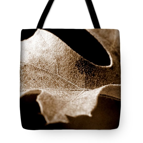 Leaf Study In Sepia Tote Bag by Lauren Radke