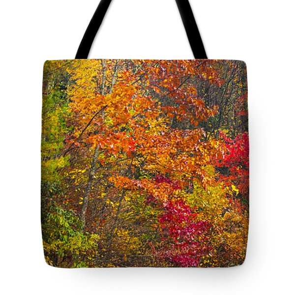 Tote Bag featuring the photograph Leaf Tapestry by Rob Hemphill