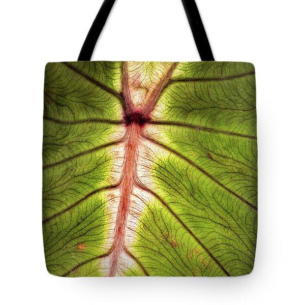 Leaf With Veins Tote Bag