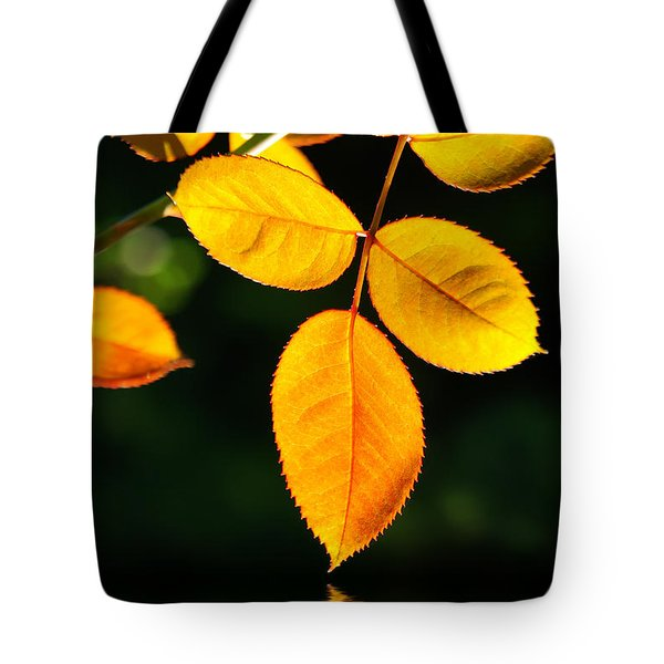 Leafs Over Water Tote Bag by Carlos Caetano