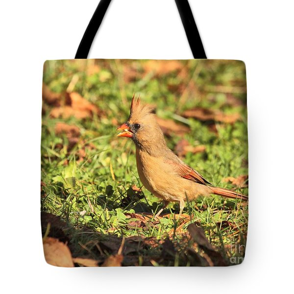 Tote Bag featuring the photograph Leafy Cardinal by Debbie Stahre