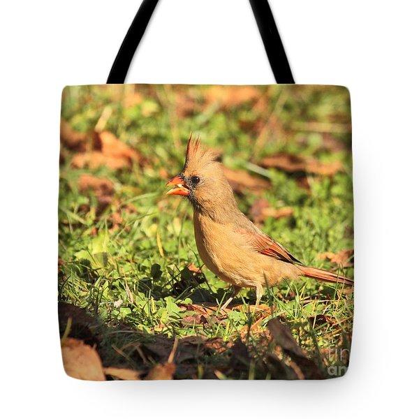 Leafy Cardinal Tote Bag