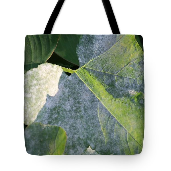 Calming Leafy Glade Tote Bag