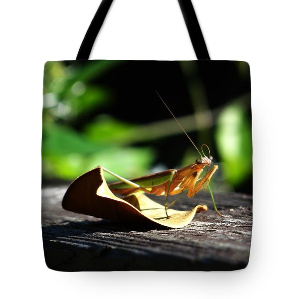 Leafy Praying Mantis Tote Bag