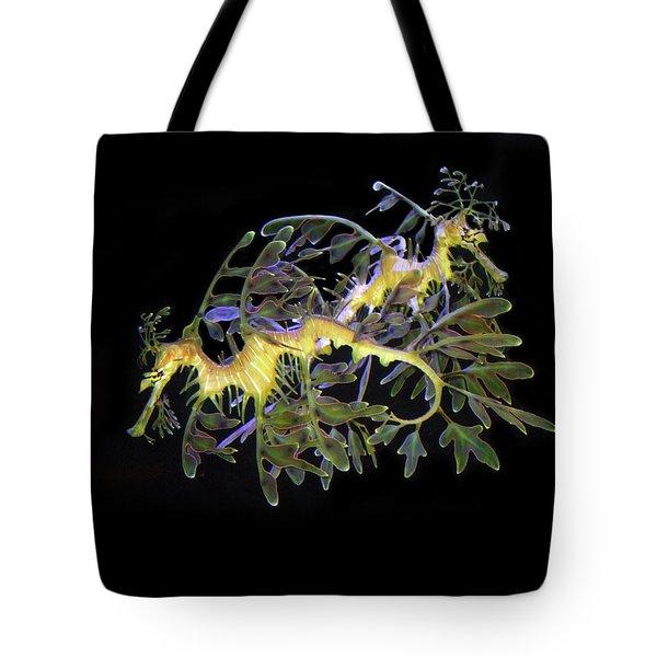Leafy Sea Dragons Tote Bag