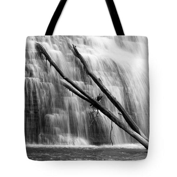 Leaning Falls Tote Bag