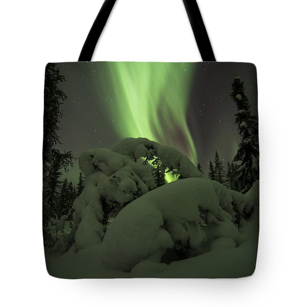 Leaning Spruce Aurora Tote Bag