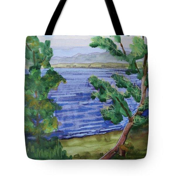 Leaning Tree By Lake Sacandaga Tote Bag