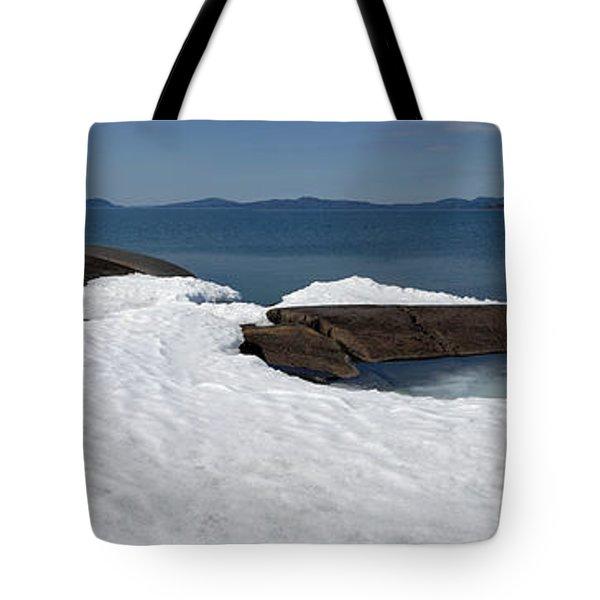Leap   Tote Bag
