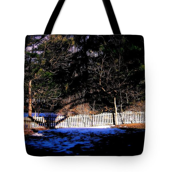 Leap Year Tote Bag by Frank J Casella
