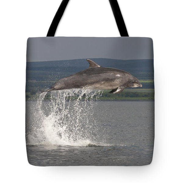Leaping Bottlenose Dolphin  - Scotland #39 Tote Bag