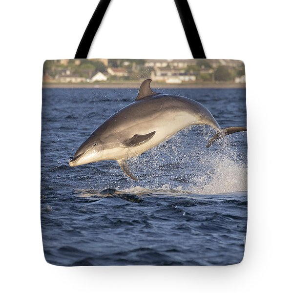 Jolly Jumper - Bottlenose Dolphin #40 Tote Bag