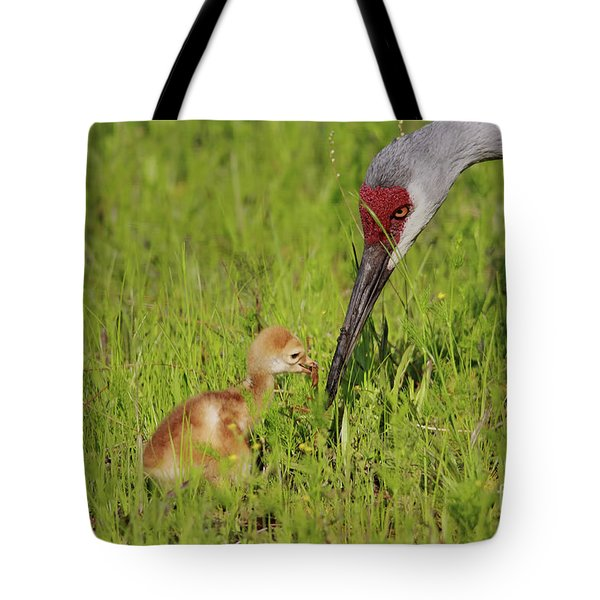 Learning To Eat Tote Bag