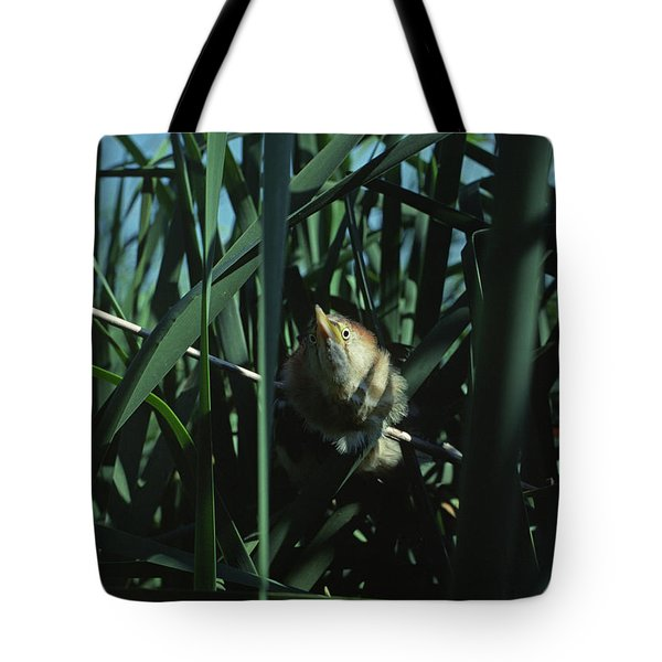 Least Bittern Lashes Out Tote Bag
