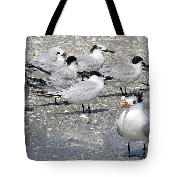 Least Terns Tote Bag by Melinda Saminski