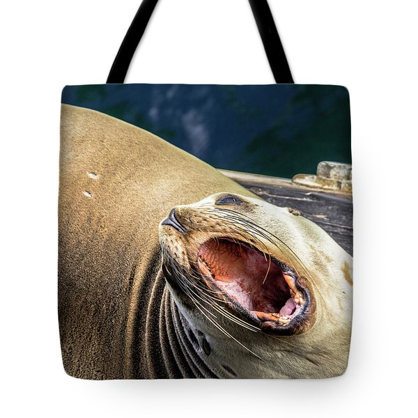 California Sea Lion Yawn Tote Bag