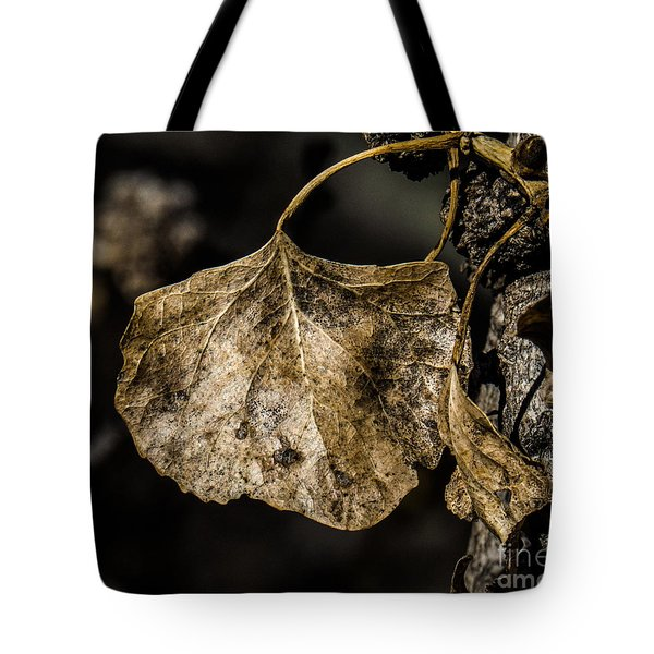 Leaves 4 Tote Bag