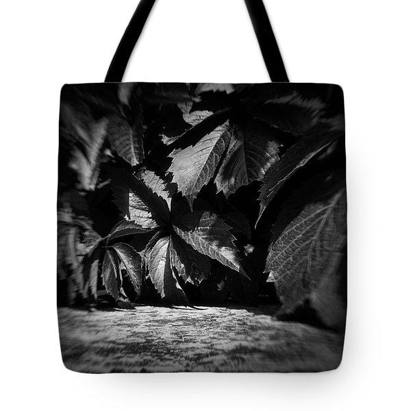 Leaves #9671 Tote Bag
