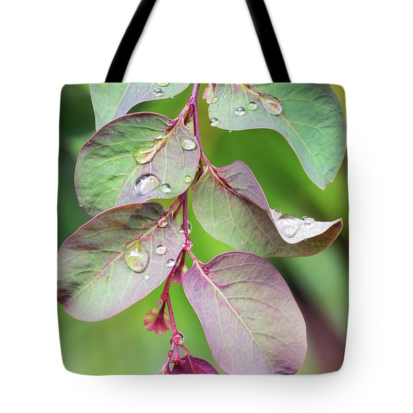 Leaves And Raindrops Tote Bag