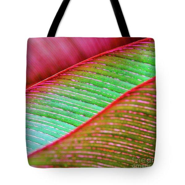 Leaves In Color  Tote Bag