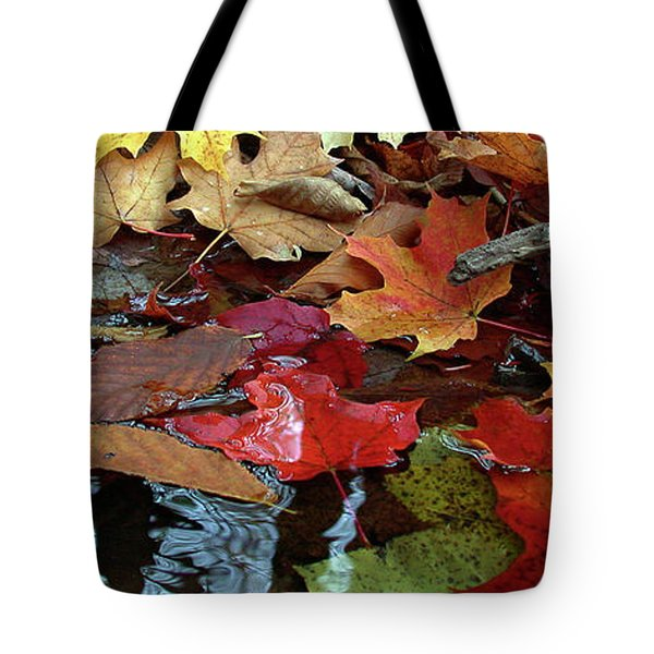 Leaves Of Color Tote Bag