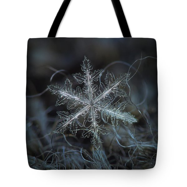 Tote Bag featuring the photograph Leaves Of Ice by Alexey Kljatov