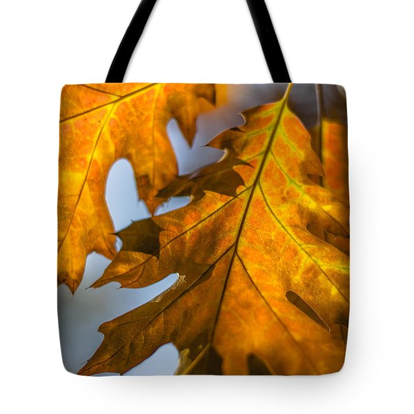 Tote Bag featuring the photograph Leaves by Randy Bayne