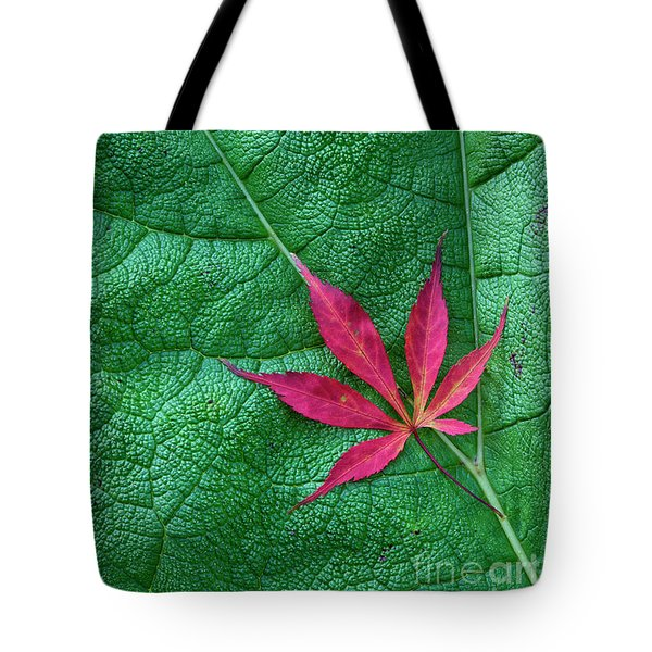 Tote Bag featuring the photograph Leaves by Tim Gainey